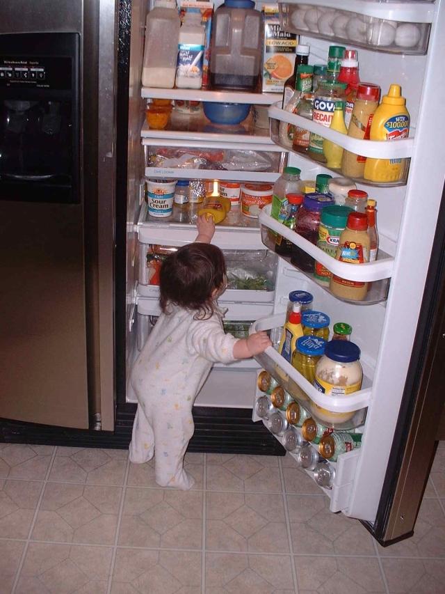 frigo y comida