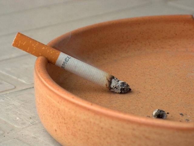 tabaco y gusto